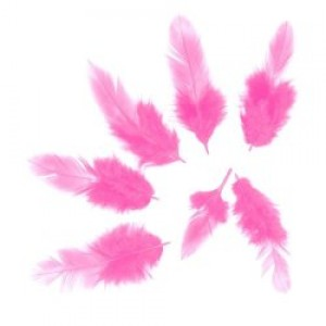 Перья Розовые, 50 шт.