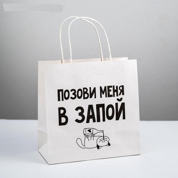 Пакет подарочный «Позови меня», 22 × 22 × 11 см