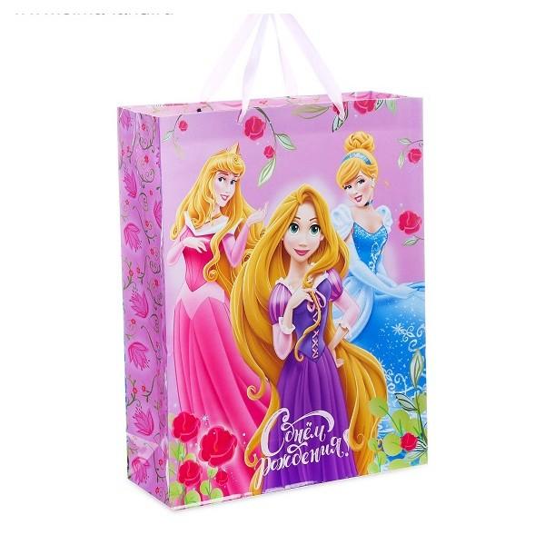 """Пакет ламинированный вертикальный """"День рождение принцессы!"""", Принцессы, 23 х 27 х 11.5 см"""
