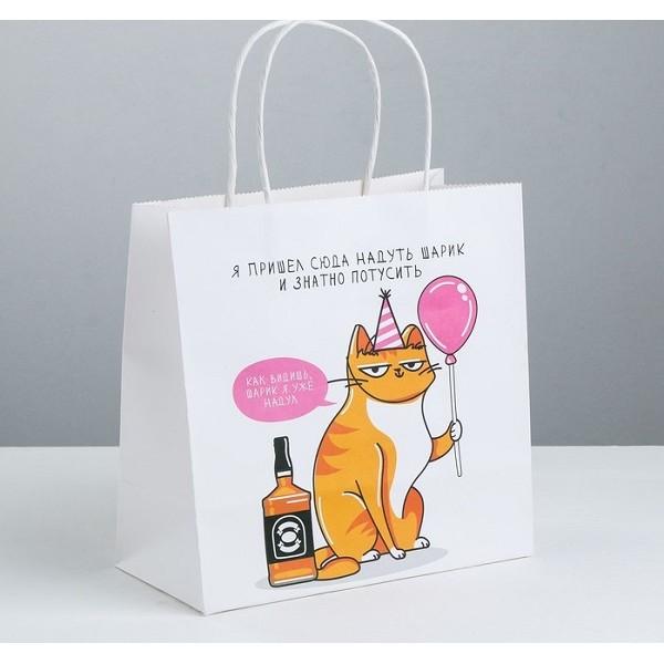 Пакет подарочный «Туса», 22 × 22 × 11 см
